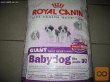 Hrana Za Pse Royal Canin Giant Adult 15+3 Kg