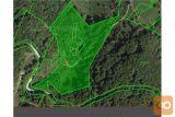 Gozd S Kmetijskim Zemljiščem In Hišo