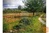 Zemljišče Zazidljivo - Komen - 1166 M2