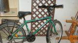 Dobro ohranjeno fantovsko gorsko kolo na prestave