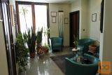 Sežana center prostor za storitve 72,2 m2