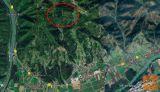 Selnica ob Dravi 71407 m2